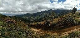 Pura vida: the Costa Ricanexperience